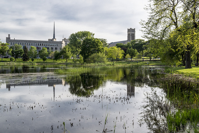 St. Mark's Episcopal Cathedral (Minneapolis, MN) and reflection