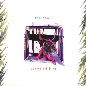 thechoir_speckledbird